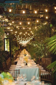 Narrow tables make for intimacy and easy conversation. LOVE all the greenery