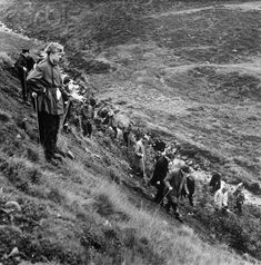 October 22, 1965 - Greenfield, England: Searchers scour the moors looking for graves after reports  were received by police of bodies buried in the area. The body of a young girl was recovered that day and police have charged a 27-year-old stock clerk, Ian Brady, and a shorthand typist, Myra Hindley, 23, with the murder.