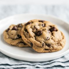 Soft Chocolate Chip Cookies - Handle the Heat