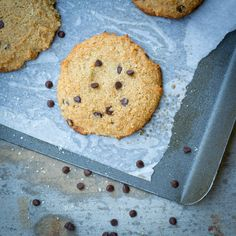 Double Chocolate Chip cookies that are grain & gluten free.  So amazing and DELICIOUS  #glutenfree #grainfree #paleo #recipes