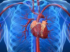 High platelets (thrombocytosis)