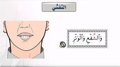 صفات الحروف _ التفشي : حرف ش