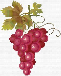 Cross Stitch | Grapes xstitch Chart | Design