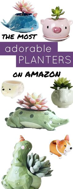 These cute flower pots from Amazon are perfect planters for small plants.