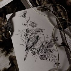 "5,251 Likes, 37 Comments - •Diana Severinenko (@dianaseverinenko) on Instagram: ""#bird #sketch #artmagazine #artwork #artgalery #worldofartists #art_spotlight #sketch_daily…"""