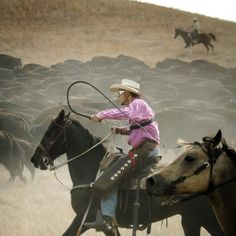 Custer State Park Buffalo Roundup - Last Friday in September