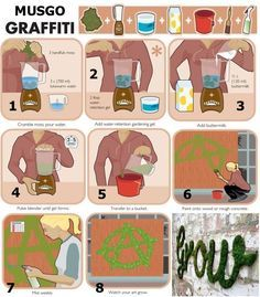 Como hacer graffiti con musgo.
