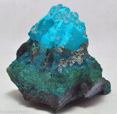Eilat Stone (azurite/ chrysocolla/ malachite/ turquoise) from King Solomon Mine, Israel / Mineral Friends