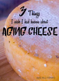 3 Things I wish I had known about Aging Cheese-Swiss Hills Ferments (Homemade Cheese) Butter Cheese, Meat And Cheese, Wine Cheese, No Dairy Recipes, Cooking Recipes, Goat Milk Recipes, Healthy Recipes, Cheese Cave, Tofu