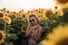 """632 Likes, 27 Comments - Cassie Cook (@cassiencook) on Instagram: """"if only sunflowers bloomed year round 🌞 Taking bookings for sunflower sessions! They will probably…"""""""