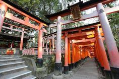 千本鳥居-外國人為何會覺得伏見稻荷神社「很酷」? | nippon.com 日本網