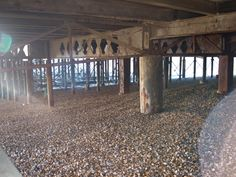 I like how in this photograph you having the sunlight rays pouring in from the left hand side, it really completes this composition - South Parade Pier, Portsmouth.