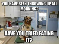 Funny Animal Pictures Of The Day - 27 Pics | Follow @gwylio0148 or visit http://gwyl.io/ for more diy/kids/pets videos