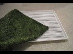 Make your own Pet Potty for in the house or outside for about $40.  Easily rinse the artificial turf clean and drain the mess without making a mess!  Once you train your pet to use this potty, you won't have to worry about it messing up your yard, patio, or carpet.    Thanks to Dash the Beagle for taking the lead role in this film :)