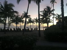 The end of another picture-perfect day in paradise! Thanks to our guest Craig for sharing this photo with us. #carlislebayantigua #carlislebay #antigua #tropical #paradise #palmtrees #beach #sunset #sunsets #beautiful #view #night #nighttime
