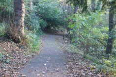Good walk way