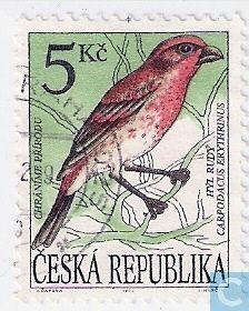 Timbres-poste - Tchéquie [CZE] - Oiseau