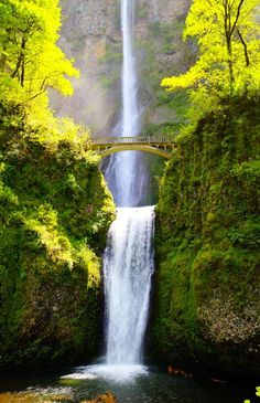 Oregon's beauty is breathtaking!  I've been to Portland and area but really need to sit by, and hike around this beautiful waterfall.