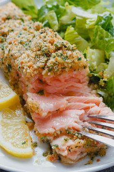 Baked Parmesan Crusted Salmon Need dinner STAT? This salmon is cheesy moist and SO delicious. - by Baked Parmesan Crusted Salmon Need dinner STAT? This salmon is cheesy moist and SO delicious. Seafood Dishes, Seafood Recipes, Dinner Recipes, Cooking Recipes, Healthy Recipes, Dinner Ideas, Sushi Recipes, Crockpot Recipes, Cake Recipes