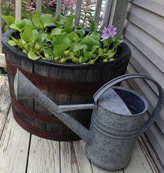 Prim With Love ~ My Garden