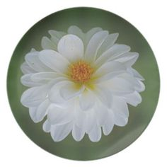 Dahlia flower and meaning party plate