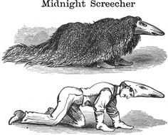 The Midnight Screecher from What Shall We Do To-Night? by Leger D. Mayne, 1873.
