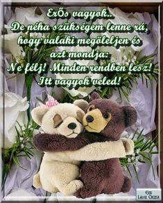 Teddy Bear, Teddy Bears