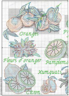 Cuadro citricos 1