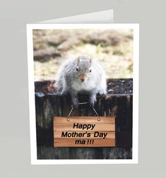 Squirrel Mothers Day card  Funny Mother's Day card by belvidesigns