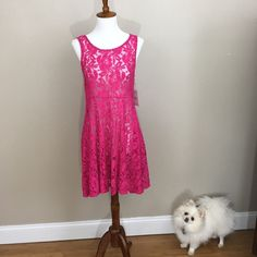 """🎉HP🎉🆕Free People Miles Of Lace Sleeveless Dress This dress is NWT! It is hot pink lace and see through. Definitely needs a slip or something underneath. Has snaps under shoulder straps. One is missing the string that connects on piece to the other. Shown in last photo. It is approximately 15"""" across the bust when laid flat and 32 1/2"""" long. Color is more like the first & last photos. It is difficult to get this dress to show actual color on camera. Shell:  70% cotton, 30% nylon   Lining…"""