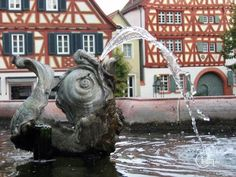 Neoclassical dolphin fountain in the market square in Ladenburg, Germany
