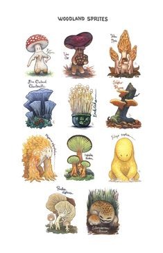 Woodland Sprites - A gallery-quality illustration art print by Emma Lazauski for sale.