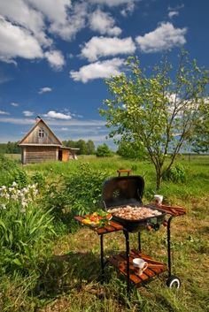 Picnic Barbeque in fine weather in the garden: Lizenzfreie Bilder und Fotos Best Grill Recipes, Summer Grilling Recipes, Easy Summer Meals, Easy Family Meals, Summer Recipes, Grilling Ideas, Summer Food, Easy Recipes, Grilling The Perfect Steak