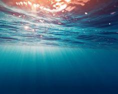 Скачать обои море, лето, вода, свет, брызги, блики, пузыри, океан, течение, глубина, отпуск, подводный мир, underwater, drops, раздел природа в разрешении 1280x1024