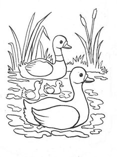 Awesome Most Popular Embroidery Patterns Ideas. Most Popular Embroidery Patterns Ideas. Animal Coloring Pages, Coloring Book Pages, Coloring Pages For Kids, Cartoon Drawings, Easy Drawings, Animal Drawings, Drawing Lessons For Kids, Art Lessons, Easter Bunny Colouring