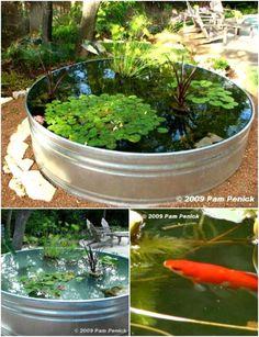 Garden Design Stock Tank Mini Yard Pond - One of my favorite things in the world to do is to work on my landscaping. Whether I'm planting flowers or involved in a huge DIY garden project, I just love being outside and improving Patio Pond, Ponds Backyard, Large Backyard, Garden Pond, Mini Pond, Container Water Gardens, Container Pond, Small Water Gardens, Goldfish Pond