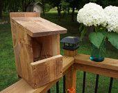 Robin Cardinal Box - Bird House
