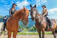 Reitferien im wunderschönen Tiroler Land 🐴  #urlaubaufdembauernhof #reiterhof #dagnhof #walchsee #tirol Horses, Animals, Equestrian, Nice Asses, Animales, Animaux, Horse, Words, Animal