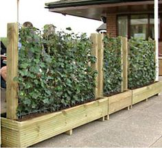 (not a DIY) Trough planters with tall supports for trailing plants to make screens - along with a pergola... I'm all about privacy!