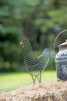 """Fantastic """"metal art plasma"""" info is available on our web pages. Check it out and you wont be sorry you did. Chicken Wire Art, Chicken Wire Crafts, Metal Chicken, Metal Yard Art, Metal Art, Wire Art Sculpture, Chicken Wire Sculpture Diy, Wire Sculptures, Garden Statues"""