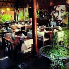 Pantarei Restaurant & Bar is a Greek Restaurant in Badung, Bali, Indonesia popular with Asian people, Hispanic people, Tourists, Students.