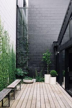 terrace garden Patio-Terrasse neutrale Far - garden Terrace Garden, Garden Pots, Potted Garden, Green Terrace, Tomato Garden, Indoor Garden, Small Gardens, Outdoor Gardens, Outdoor Spaces
