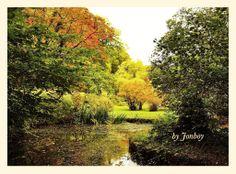 Bryngarw Park