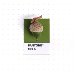 Designer Continues Pairing Tiny Objects with Matching Pantone Swatches - My Modern Met