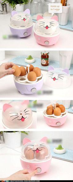 Miért kotlanak ezek a macskák tojásokon? :)* Why would these cats brood on eggs? :)