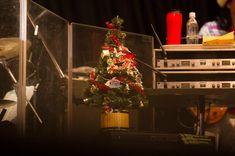 《ライブレポート》 2016年のクリスマスがもうそこまでやってきている今夜、12月20日。東京・恵比寿ガーデンホールで、L'ULTIMO BACIO Anno 16 佐野元春 & THE COYOTE BAND「Rockin' Christmas 2016」が開催された。元春&ザ・コヨーテバンドは今年、全国の音楽フェスに登場していたが東京でフルステージを楽しめる貴重なライブということもあり、オーディエンスも最初からフルスロットルだ。そんな会場をさらに暑くしたのが、髪をショートカットにして新しいスタイルで登場した元春。そのパフォーマンスは、いつにもましてシャープで、そしてどこかユーモラスなのはクリスマス・ライブを存分に楽しんでいる証だろう。セットリストもアルバム『COYOTE』以降のナンバーを中心に新旧織り交ぜつつ、11月にリリースしたばかりの3トラックEPから「新しい雨」「或る秋の日」も初披露。来年初夏にはリリースを目指す新作アルバムのレコーディングも続いているとMCもあったが、コヨーテバンドの絶好調な様子が存分に楽しめるライブだった。 Christmas Tree, Holiday Decor, Teal Christmas Tree, Xmas Trees, Christmas Trees, Xmas Tree