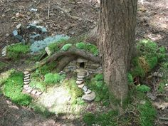 Tree roots make great little nooks and crooks for fairy homes!