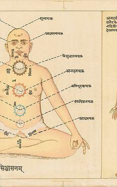 A Visual History Of Yoga | Co.Design | business + design