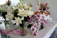 Stunning floral arrangements from BLOOMS.  Call the BLOOMS Flower Line on +94 773 512399 / +94 112 508311 or visit us at 314, Havelock Road, Colombo 05 for any of your floral needs.  BLOOMS... Handpicked just for you #fashion #style #stylish #love #me #cute #photooftheday #nails #hair #beauty #beautiful #design #model #dress #shoes #heels #styles #outfit #purse #jewelry #shopping #glam #cheerfriends #bestfriends #cheer #friends #indianapolis #cheerleader #allstarcheer #cheercomp  #sale #shop…