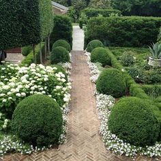 Can't wait to have the works I have planned for our garden completed. I need a herringbone brick path in my life!